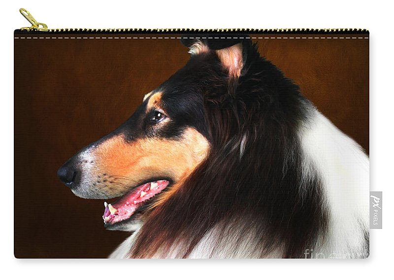 Dog Carry-all Pouch featuring the photograph Black Jack- Collie by Sandra Moore