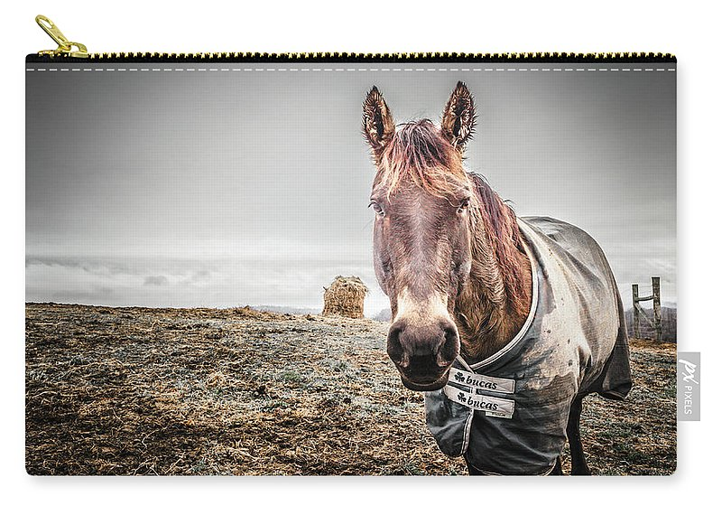 Farm Life Carry-all Pouch featuring the photograph Jacketed Horse by Jim Love