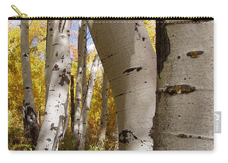 Trees Carry-all Pouch featuring the photograph Jackson Hole Wyoming by Amanda Barcon