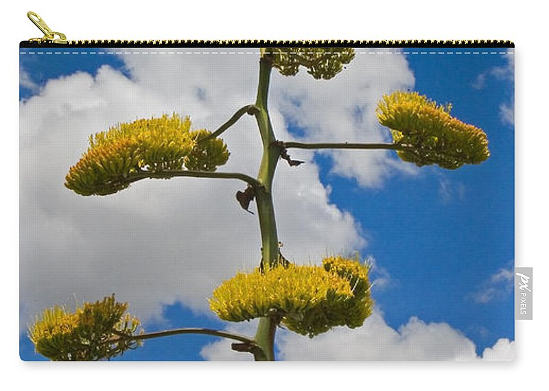 Blue Carry-all Pouch featuring the photograph Jacobs Ladder by Skip Hunt