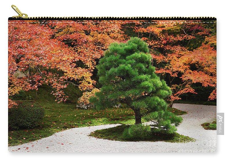 Japanese Black Pine Tree Tenjuan Temple Zen Garden In Fall Scene