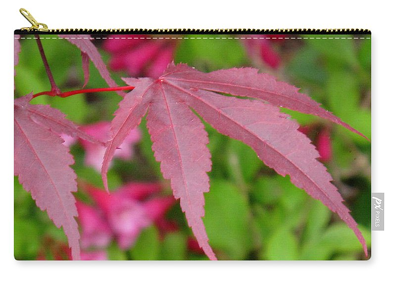Japanese Maple Carry-all Pouch featuring the photograph Japanese Maple by Ian MacDonald