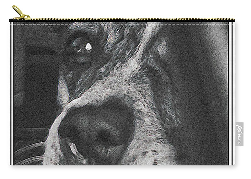 Dog Carry-all Pouch featuring the photograph Jazz by Karen W Meyer