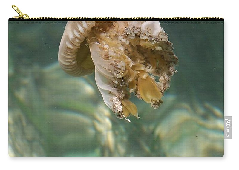 Jelly Carry-all Pouch featuring the photograph Jelly Belly by Gale Cochran-Smith