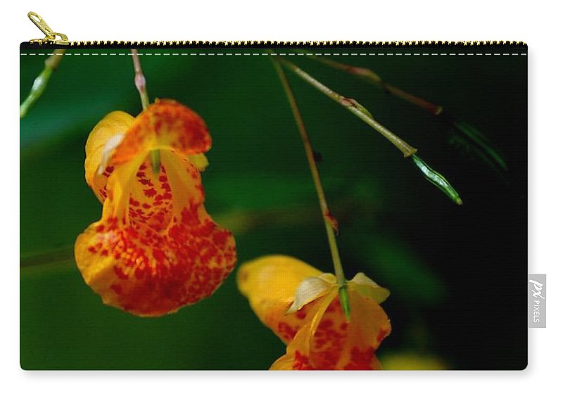 Digital Photograph Carry-all Pouch featuring the photograph Jewel 2 by David Lane