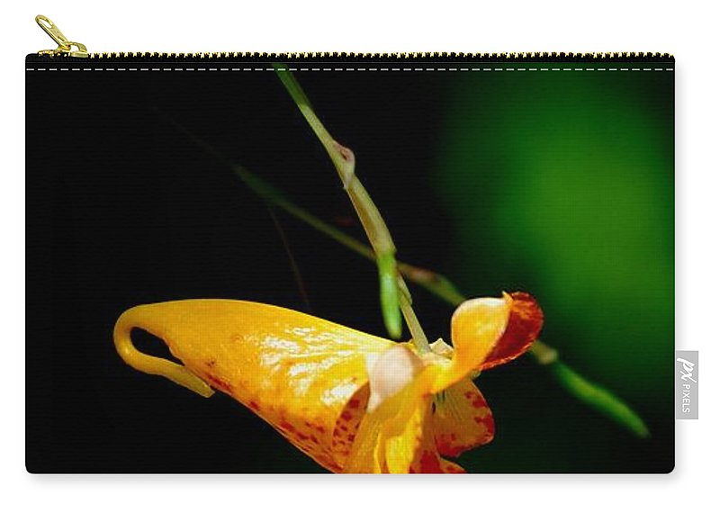 Digital Photograph Carry-all Pouch featuring the photograph Jewel by David Lane