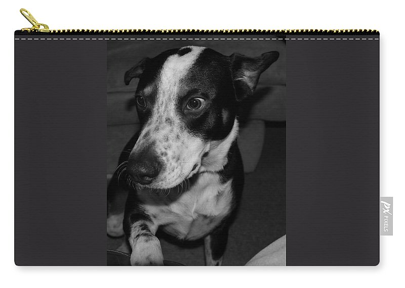 Black And White Carry-all Pouch featuring the photograph Jimmy by Rob Hans