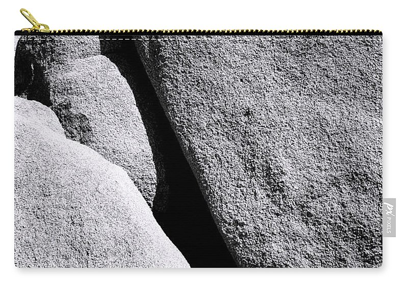 Joshua Tree Carry-all Pouch featuring the photograph Joshua Conference by William Dey