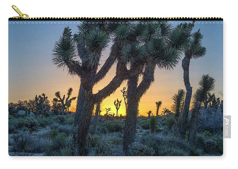 Joshua Trees Carry-all Pouch featuring the photograph Joshua Framed By Joshua by Joseph S Giacalone