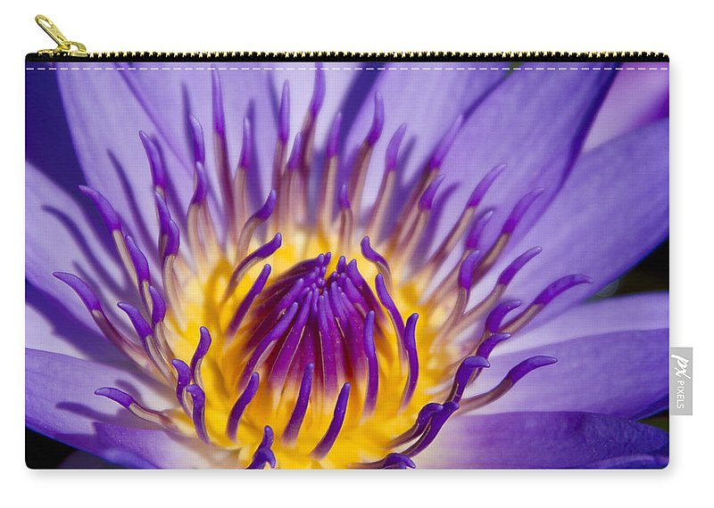 Journey Into The Heart Of Love Carry-all Pouch featuring the photograph Journey Into The Heart Of Love by Sharon Mau
