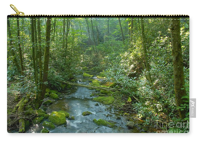 Joyce Kilmer Memorial Forest Carry-all Pouch featuring the photograph Joyce Kilmer Memorial Forest by David Lee Thompson