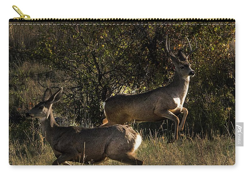Deer Carry-all Pouch featuring the photograph Jumping deer by Roy Nierdieck