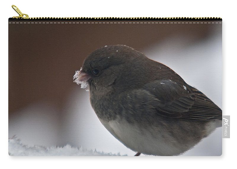 Junco Carry-all Pouch featuring the photograph Junco In Snow by Douglas Barnett