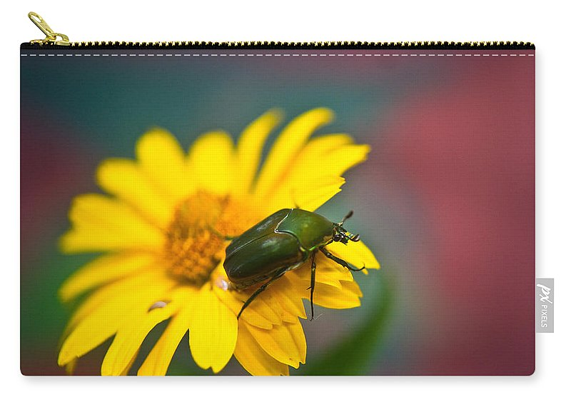 June Carry-all Pouch featuring the photograph June Beetle by Douglas Barnett