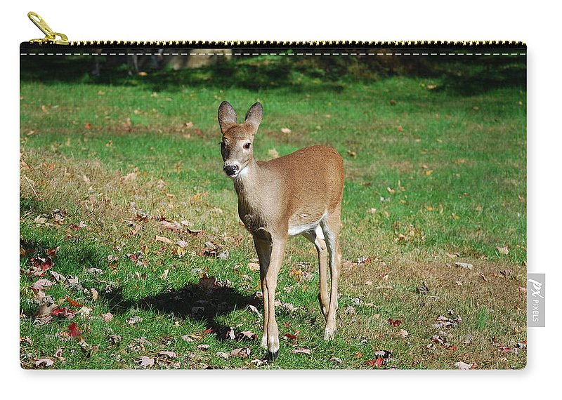 Deer Carry-all Pouch featuring the photograph Just A Baby by Lori Tambakis