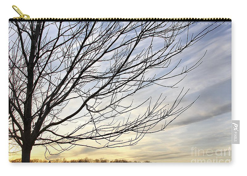 Sky Carry-all Pouch featuring the photograph Just A Tree And Clouds by Deborah Benoit