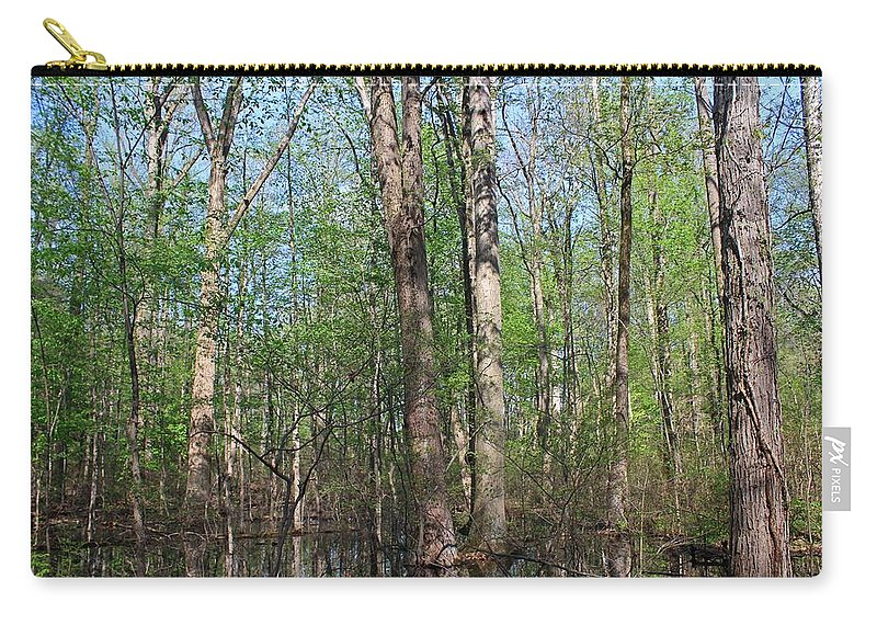 Six Mile Cypress Slough Carry-all Pouch featuring the photograph Just A Wanderer by Michiale Schneider