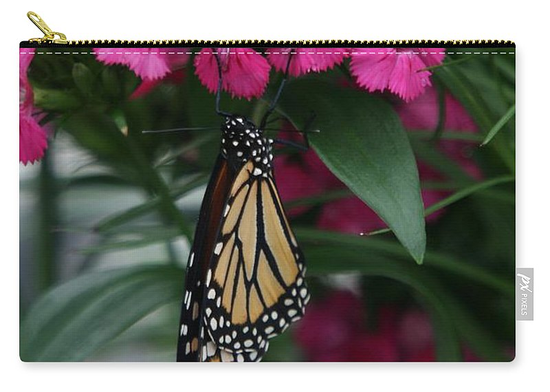 Nature Carry-all Pouch featuring the photograph Just Hangin' Out by Crystal Nederman