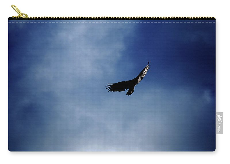 Bird Carry-all Pouch featuring the photograph Just Me And The Clouds by Lori Tambakis