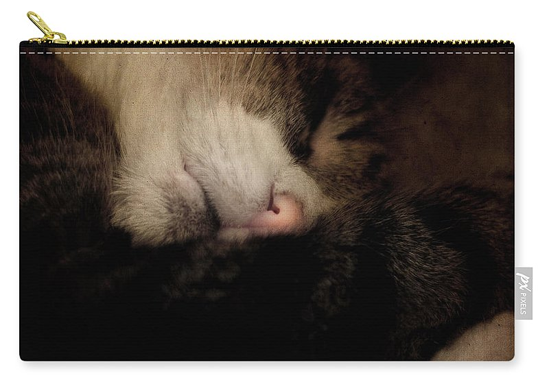 Cat Carry-all Pouch featuring the photograph Just Sleep by Angel Tarantella