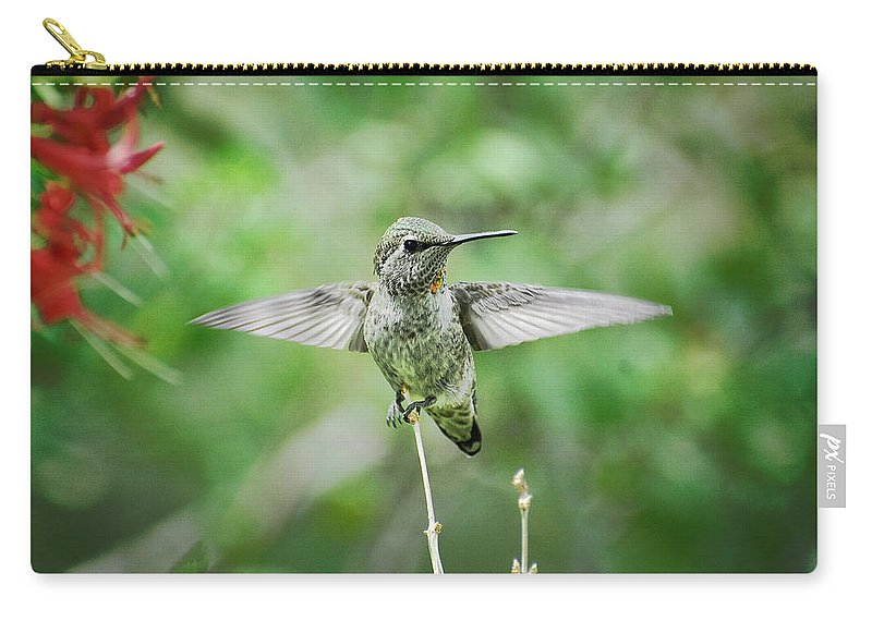 Hummingbird Carry-all Pouch featuring the photograph Just Spread Your Wings by Saija Lehtonen