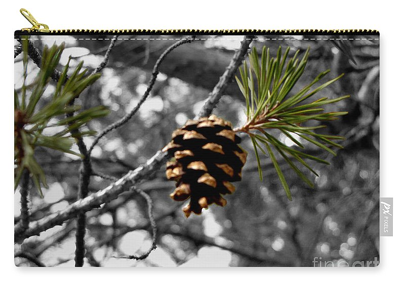 Pine Cone Carry-all Pouch featuring the photograph Just Starting by September Stone