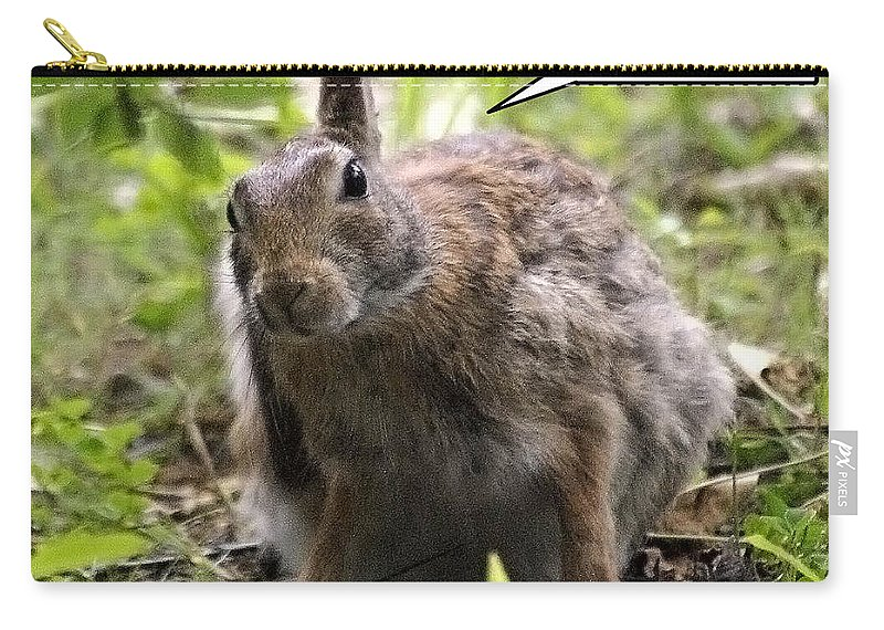 2d Carry-all Pouch featuring the photograph Just Washed My Hare by Brian Wallace