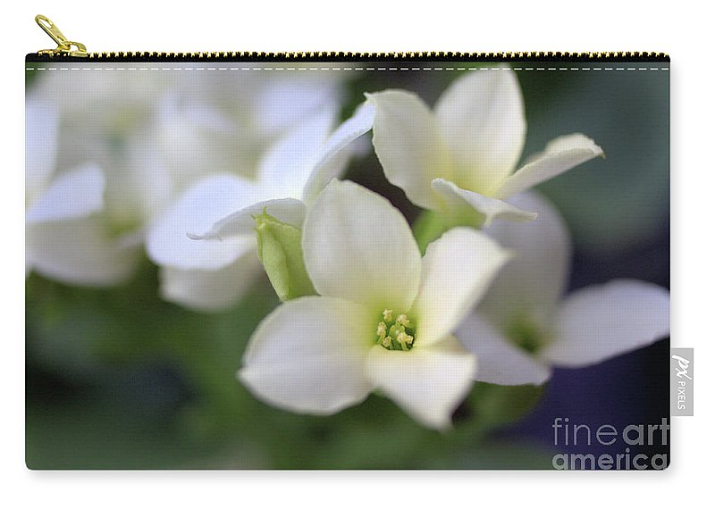 Kalanchoe Carry-all Pouch featuring the photograph Kalanchoe by Victor K