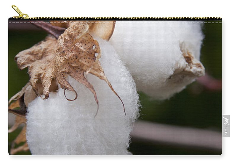 Kapok - Ceiba Pentandra - Silk Cotton Tree Carry-all Pouch