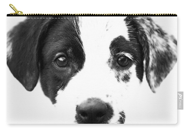 Dogs Carry-all Pouch featuring the photograph Karma by Amanda Barcon