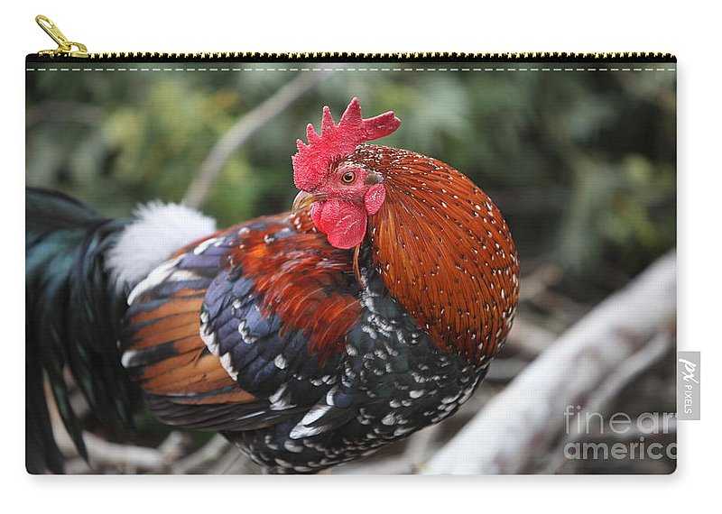 Rooster Carry-all Pouch featuring the photograph Kauai Rooster by Nadine Rippelmeyer