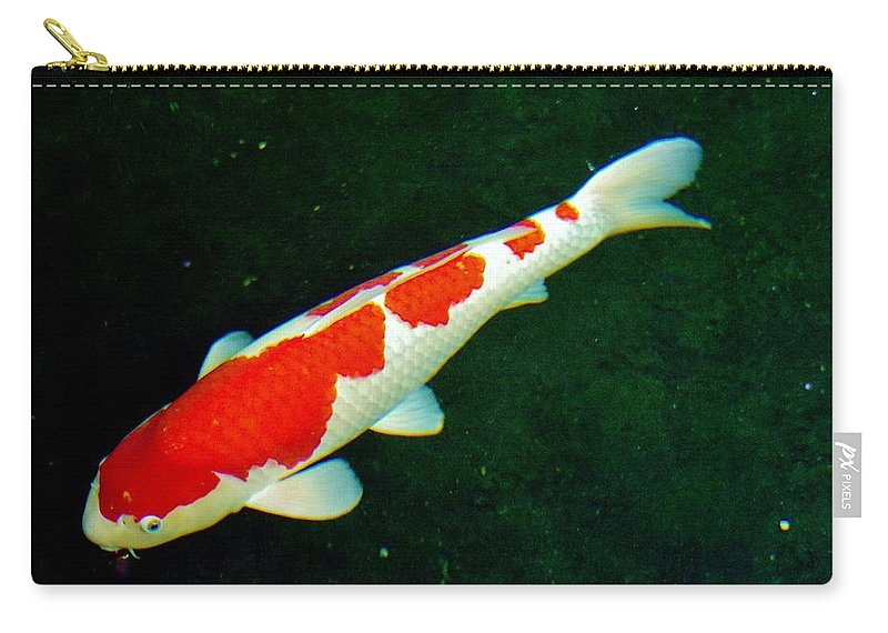 Koi Carry-all Pouch featuring the photograph Kcsd Koi 2 2016 by Phyllis Spoor