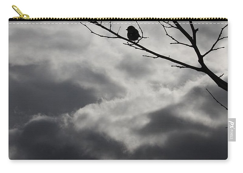 Storm Carry-all Pouch featuring the photograph Keeping Above The Storm by Carol Groenen