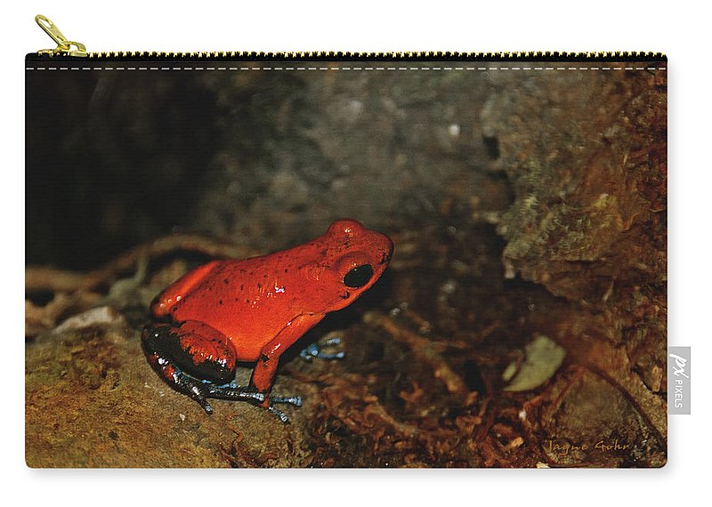 Frog Carry-all Pouch featuring the photograph Kermits Cousin by Jayne Gohr