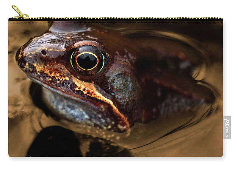 Frog Carry-all Pouch featuring the photograph Kermitt In Bronze by Rob Hawkins