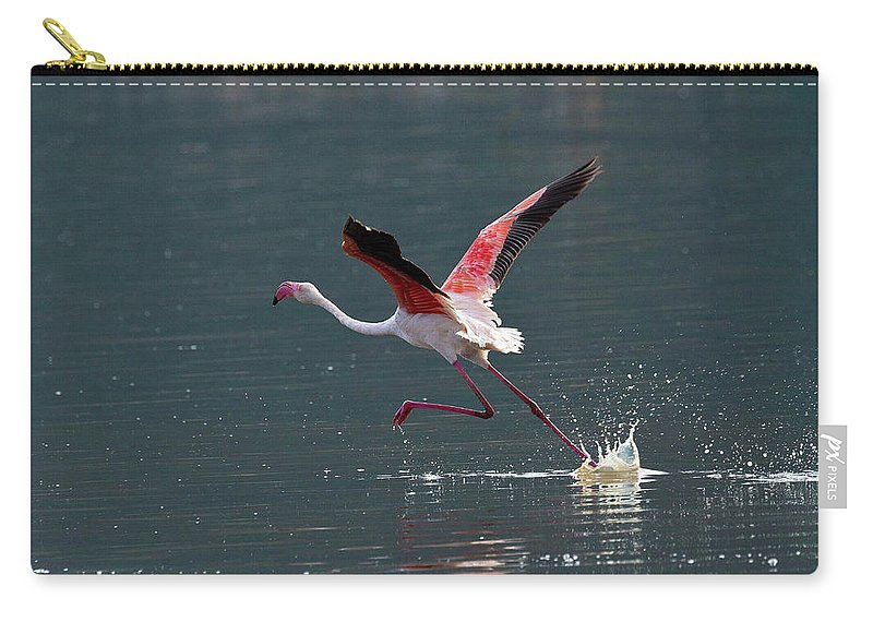Flamingo Carry-all Pouch featuring the photograph Kick Off by Janet Chung