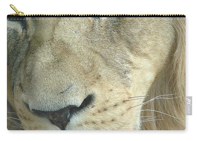 Lion Carry-all Pouch featuring the photograph King by Margaret Bobb