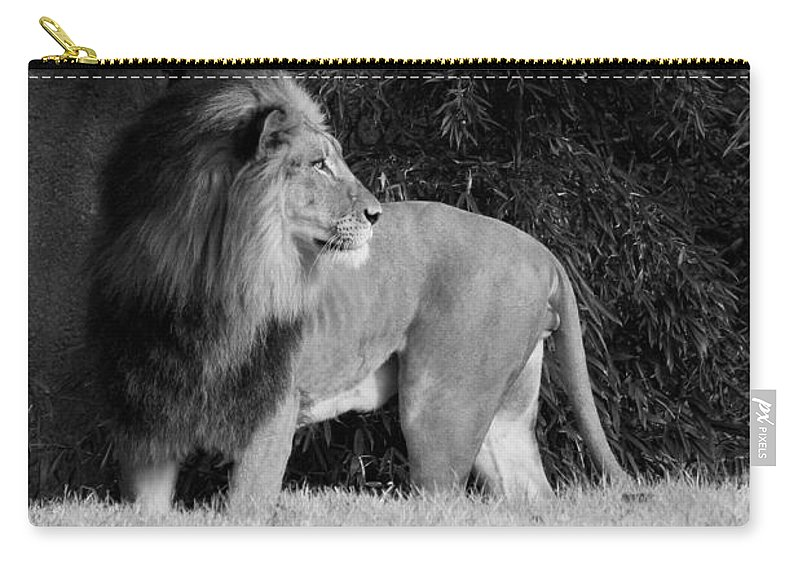 Lion Carry-all Pouch featuring the photograph King Of Beasts Black And White by Judy Whitton