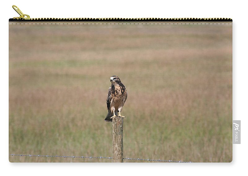Hawk Wild Bird Nature Grass Fence Barbwire Flying Carry-all Pouch featuring the photograph King Of His Domain. by Andrea Lawrence