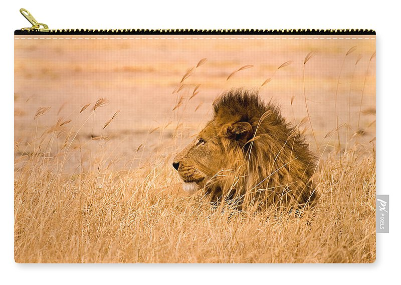 3scape Carry-all Pouch featuring the photograph King Of The Pride by Adam Romanowicz