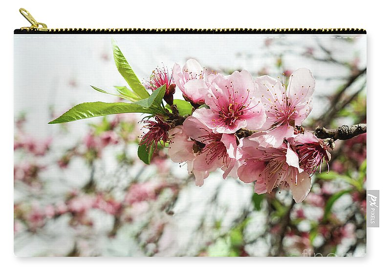 Kira Yan Carry-all Pouch featuring the photograph Kiss Of Spring by Kira Yan