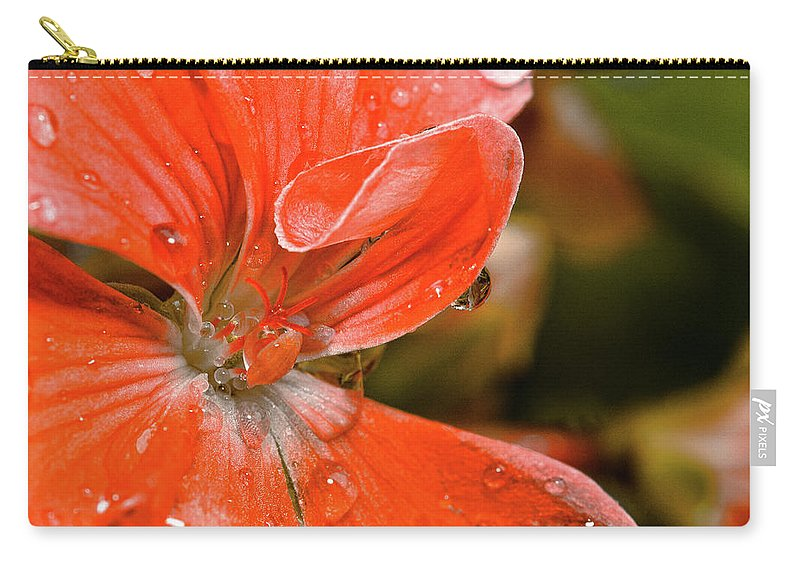 Flower Carry-all Pouch featuring the photograph Kissed By The Rain by Christopher Holmes