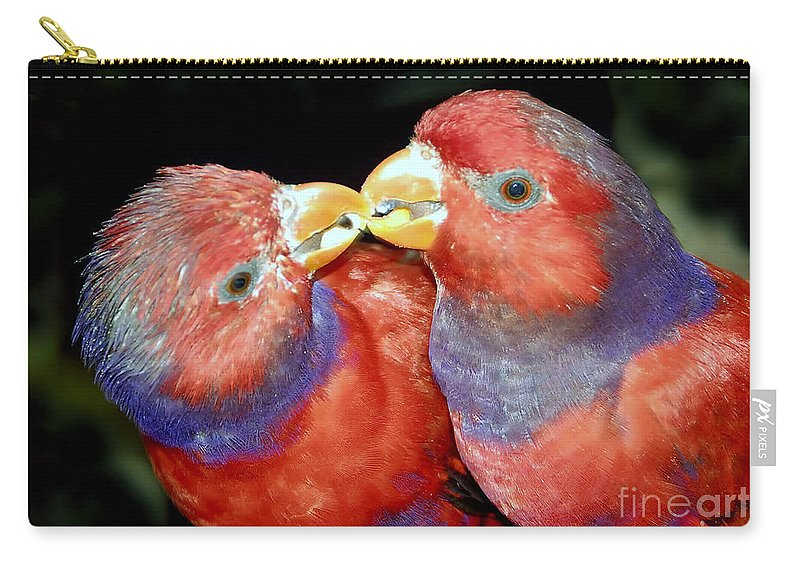 Kissing Carry-all Pouch featuring the photograph Kissing Birds by David Lee Thompson