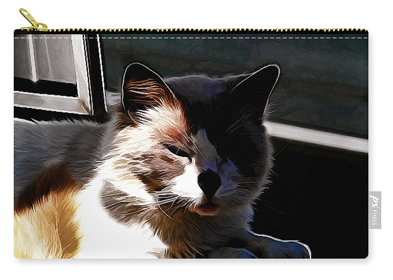 Cat Carry-all Pouch featuring the photograph Kitty In The Shadow by Ericamaxine Price