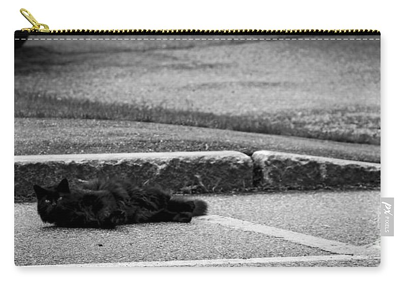 Moon Carry-all Pouch featuring the photograph Kitty In The Street Black And White by Marina McLain