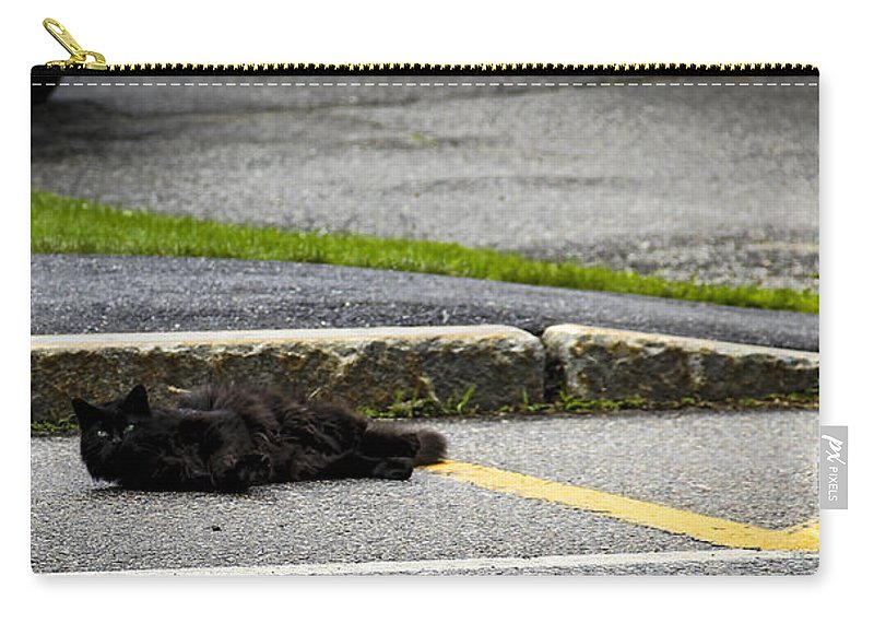 Moon Carry-all Pouch featuring the photograph Kitty In The Street by Marina McLain