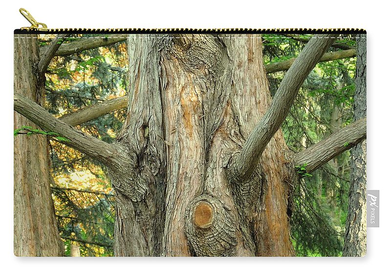 Tree Carry-all Pouch featuring the photograph Knarled by Ian MacDonald