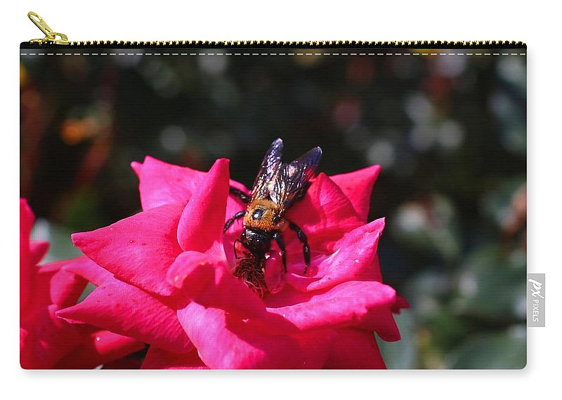 Rose Carry-all Pouch featuring the photograph Knockout Rose And Bumblebee by Kathryn Meyer