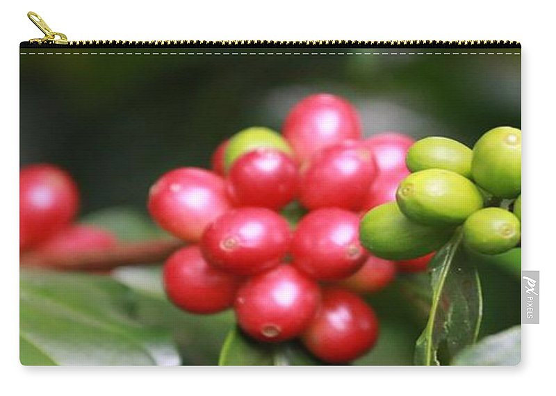 Coffee Carry-all Pouch featuring the photograph Kona Coffee by DJ Florek