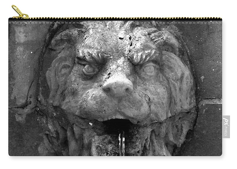 Lion Carry-all Pouch featuring the photograph Koreshans Lion by David Lee Thompson